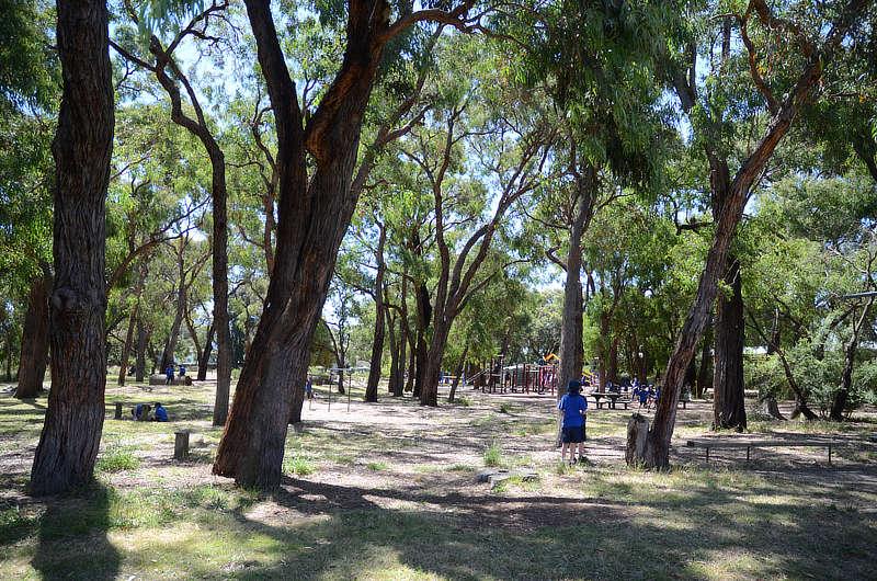 facilities-knox-park-primary-school-4